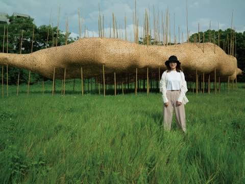 Swing Under the Bamboo