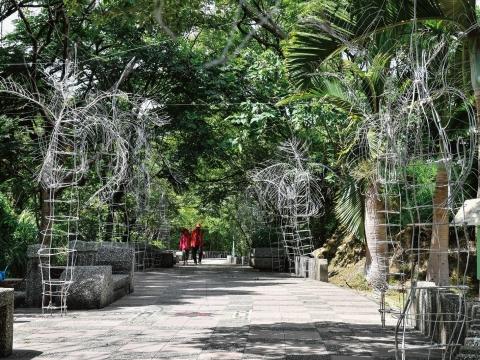 沉積層:椰林大道